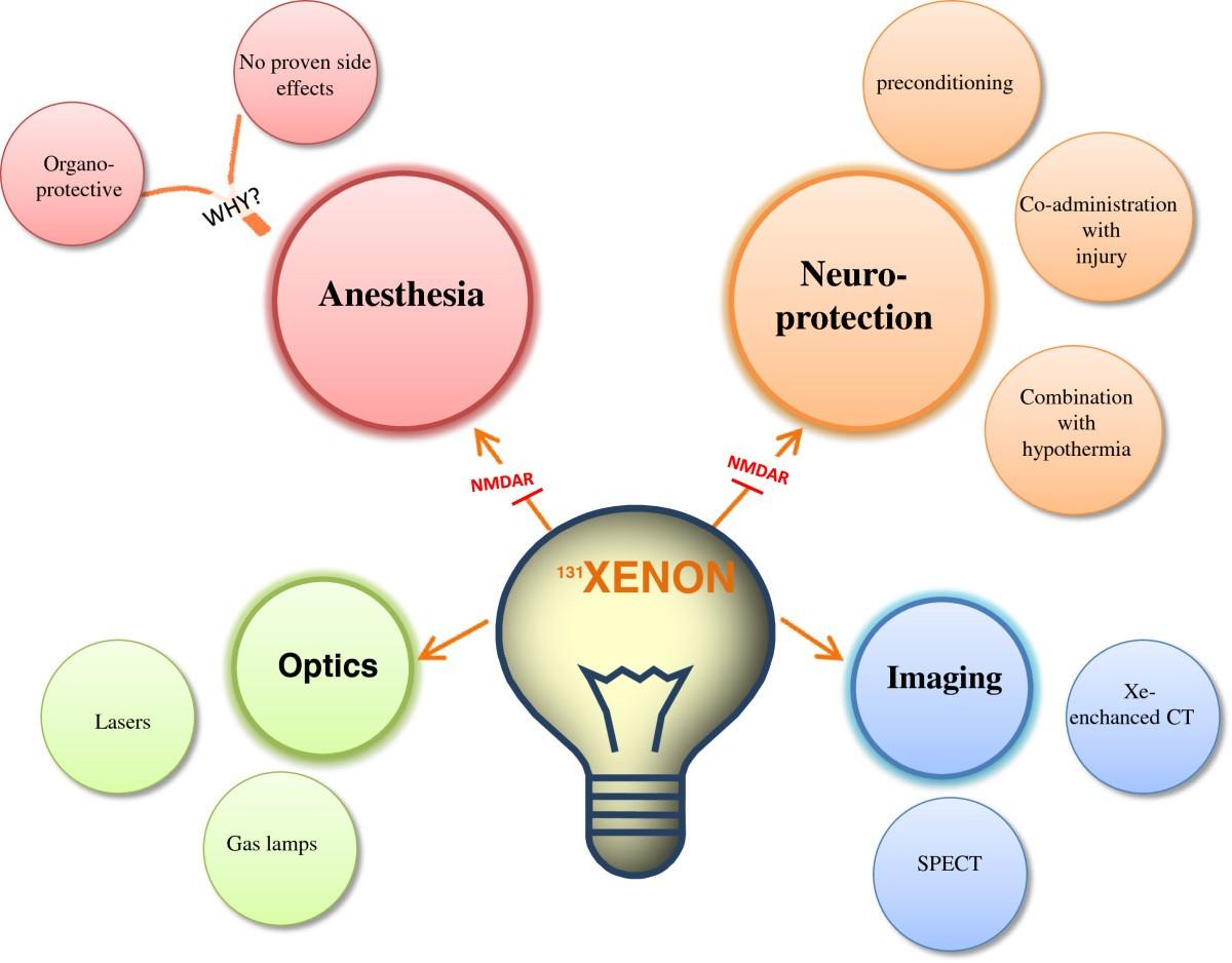 Xenon Organ-protection