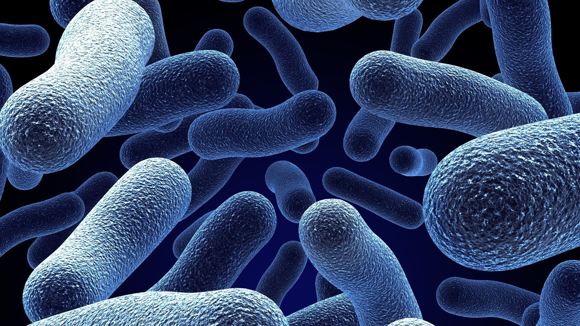Ozone's effects of bacterial infection